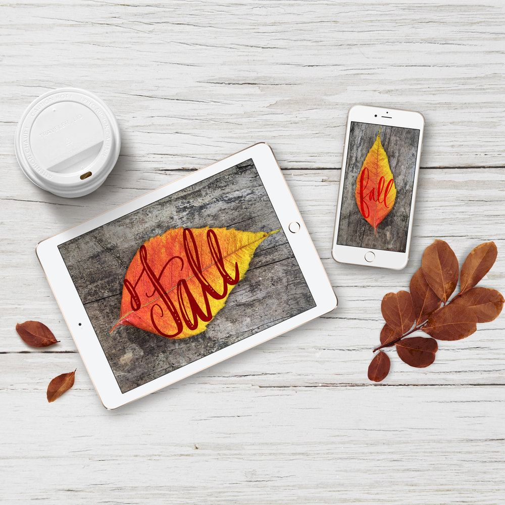 square-fall-autumn-mockups.jpg