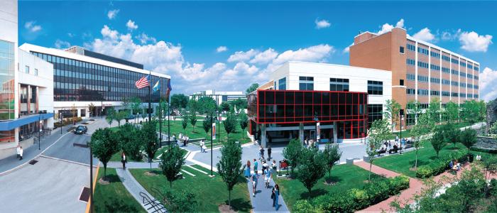 campus.png