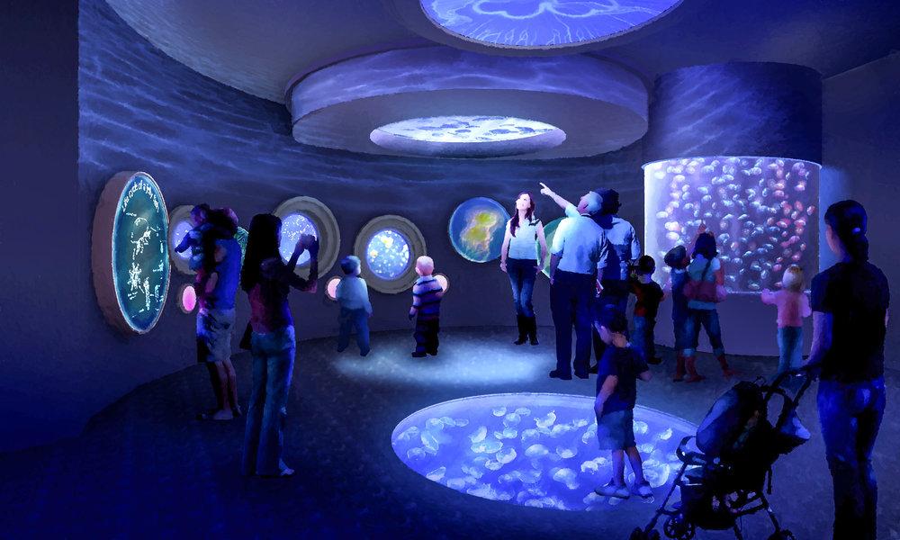 Aquarium-3.jpg