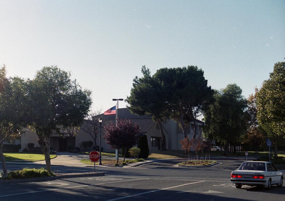 californiadreaming_1.jpg