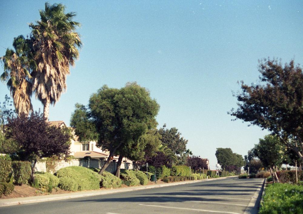 californiadreaming_3.jpg
