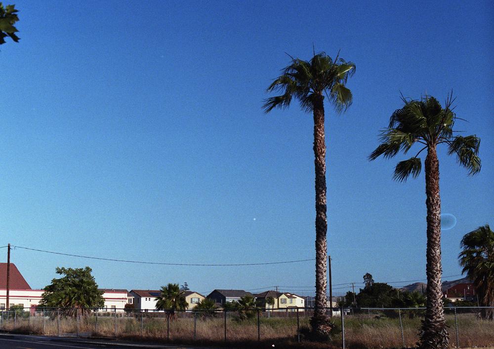 californiadreaming_7.jpg