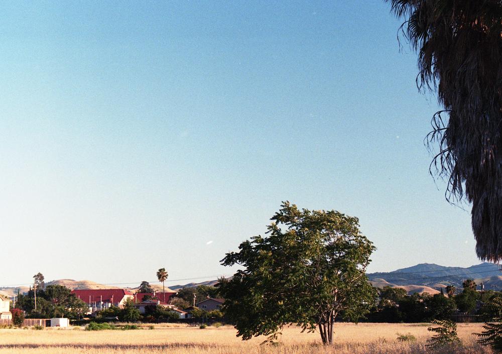 californiadreaming_9.jpg