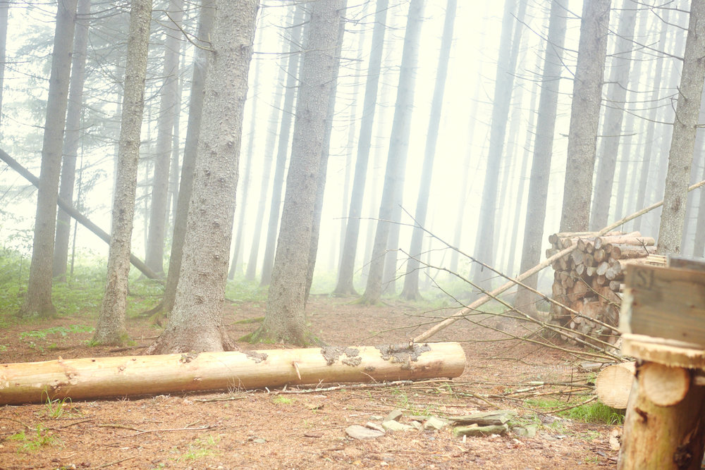 170625_Mastermind Camping_342.jpg