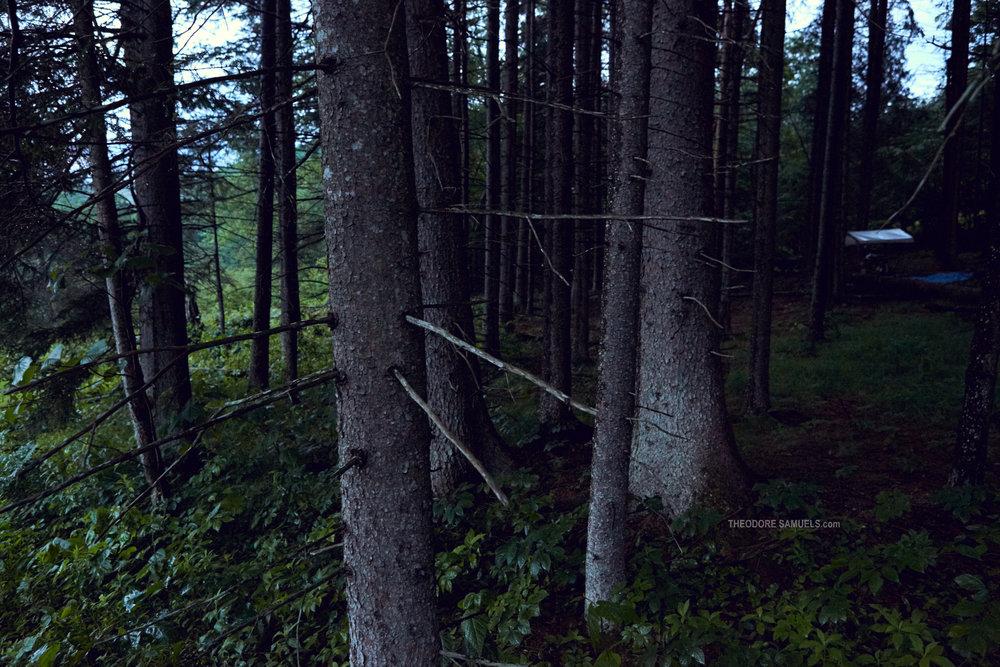 170625_Mastermind Camping_300.jpg