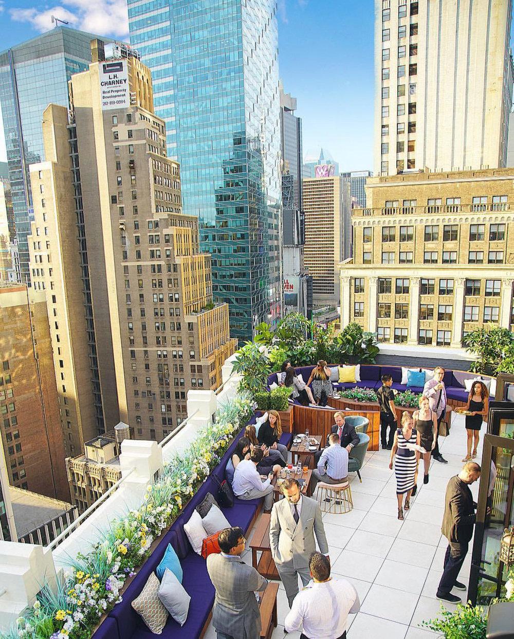 elsie-rooftop.JPG