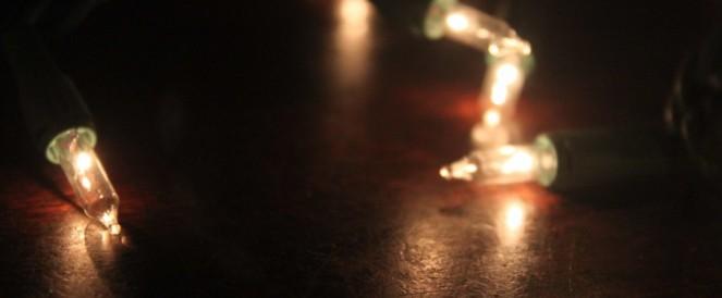 the-invisible-dog-tiny-lights.jpeg