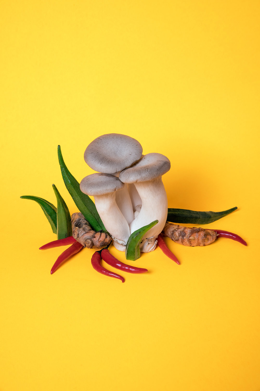 Spicy Mushroom_WEB.jpg
