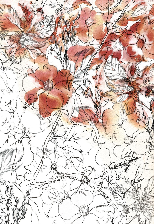 Flower_line_Web.jpg