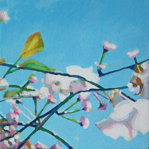 Blossom-71.jpeg
