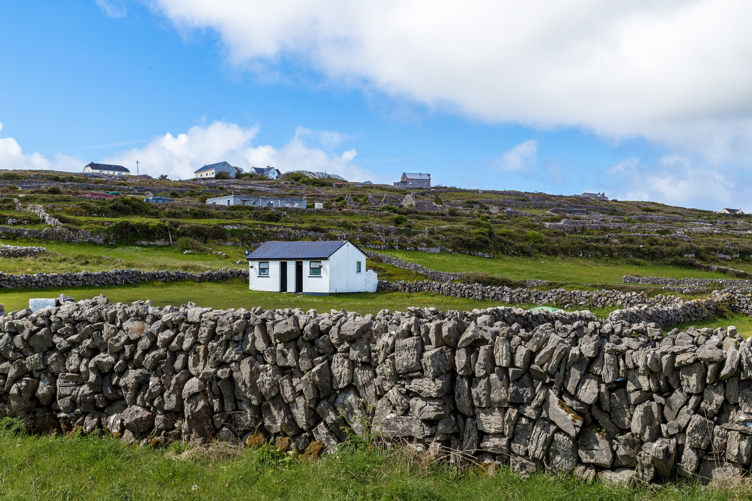Ireland_1037