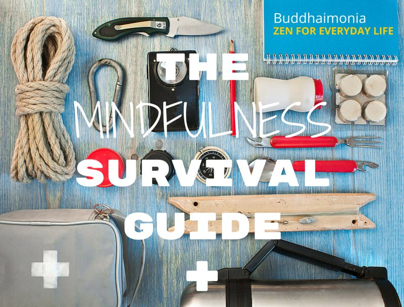 The Mindfulness Survival Guide