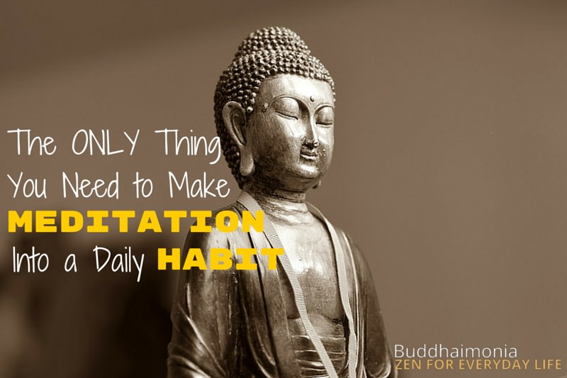 The Only Thing You Need to Make Meditation Into a Daily Habit via Buddhaimonia