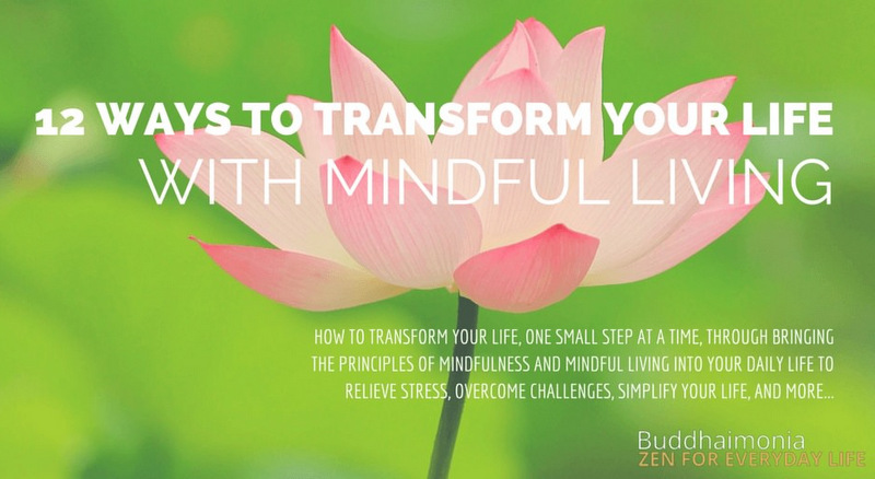 12 Ways to Transform Your Life with Mindful Living Announcement Post via Buddhaimonia