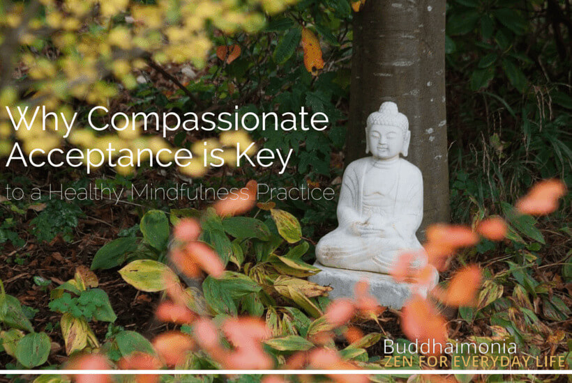 Why Compassionate Acceptance is Key to a Healthy Mindfulness Practice (and How to Do It)