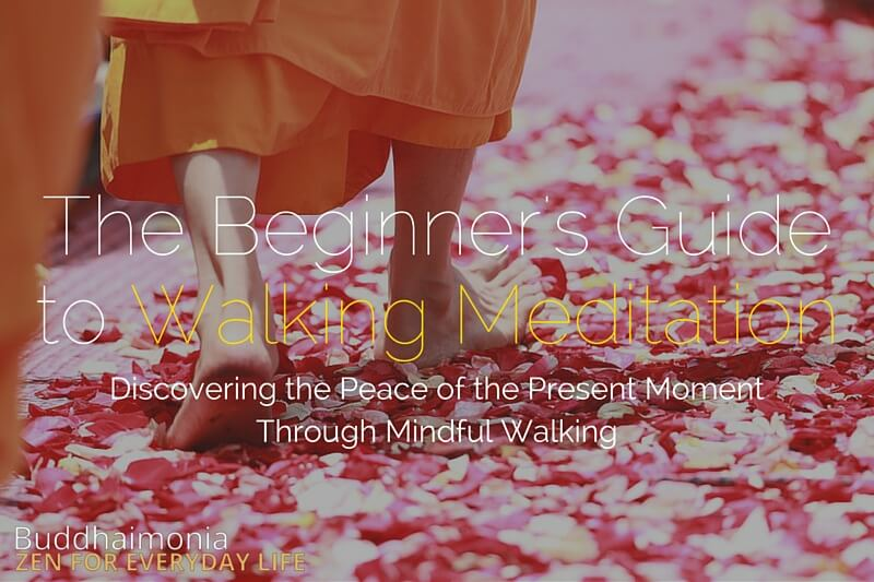 The Beginner's Guide to Walking Meditation via Buddhaimonia image