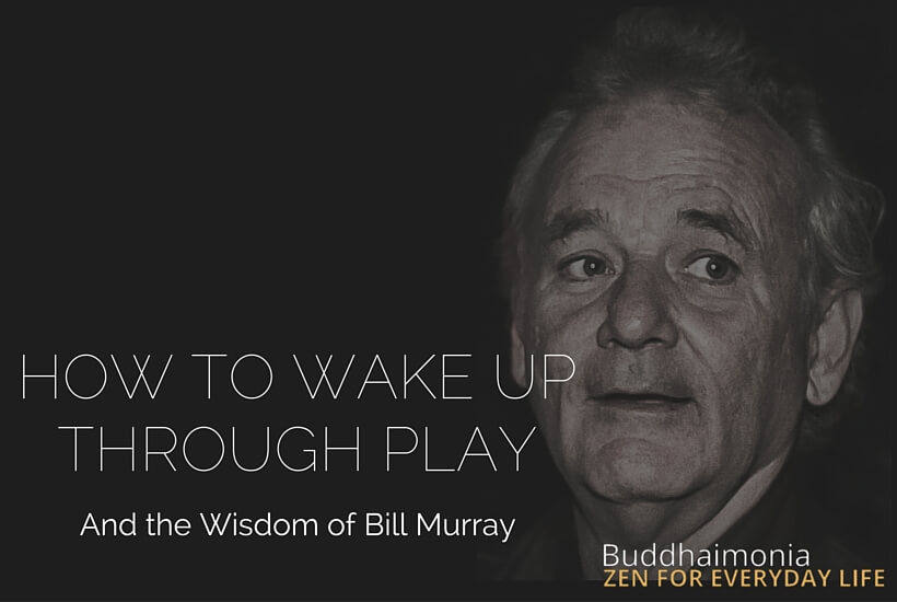 HOW TO WAKE UP THROUGH PLAY (And the Wisdom of Bill Murray) via Buddhaimonia.com