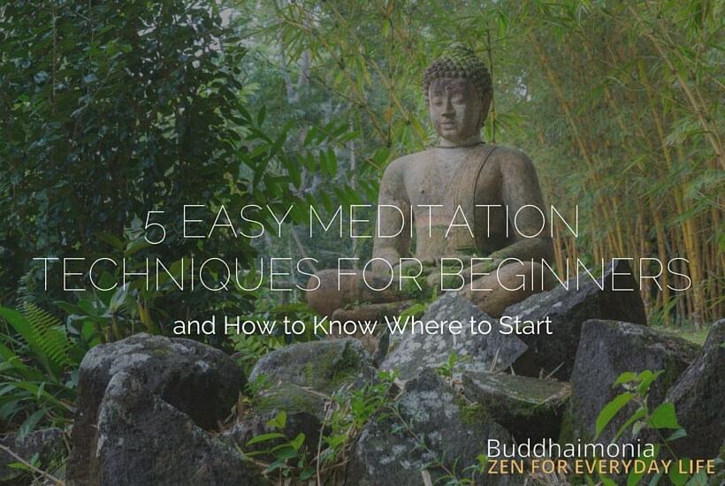 5 Easy Meditation Techniques for Beginners via Buddhaimonia