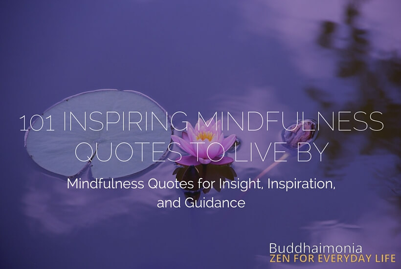 Quotes About Mindfulness Captivating 101 Inspiring Mindfulness Quotes To Live Buddhaimonia