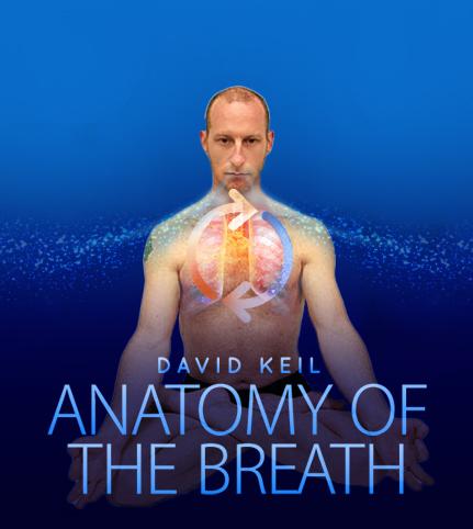 Anatomy of the Breath Workshop
