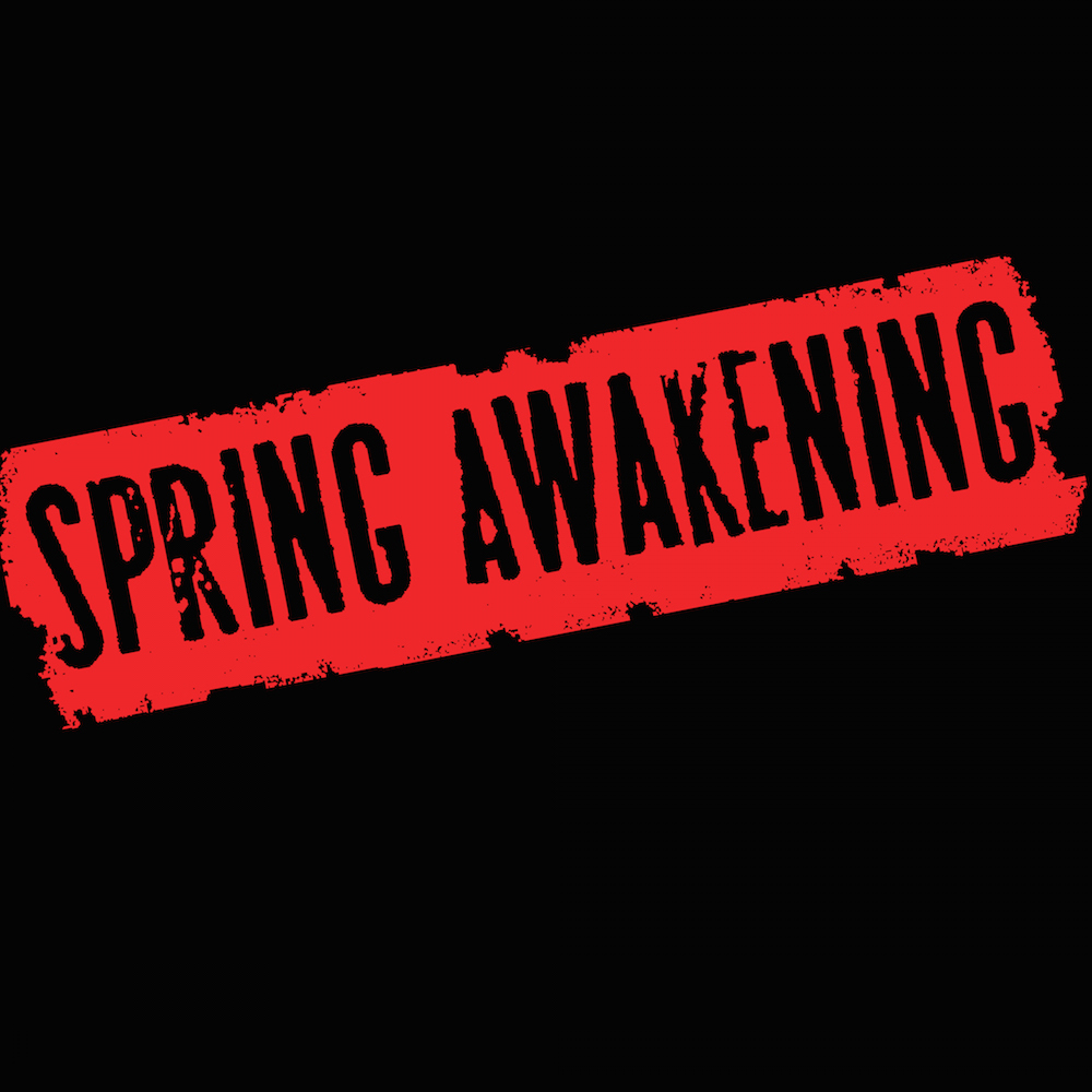 SPRING AWAKENING - Book & Lyrics by Steven SaterMusic by Duncan SheikBased on the play by Frank WedekindThe winner of eight Tony Awards, including Best Musical, told by Duncan Sheik and Steven Sater through what Entertainment Weekly called,