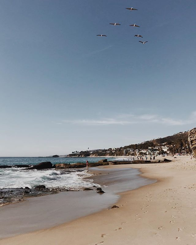 The way I see it, 1% of him is more than 100% of anyone else. 🎶Cautious Clay - Cold War  #fromwhereistand #favoritespot #laguna #lagunabeach #beach #ocean #sky #landscape #birds #scenery #iphoneonly #vscophile #vscophile #vscodaily #summer #spring #california #socal #losangeles
