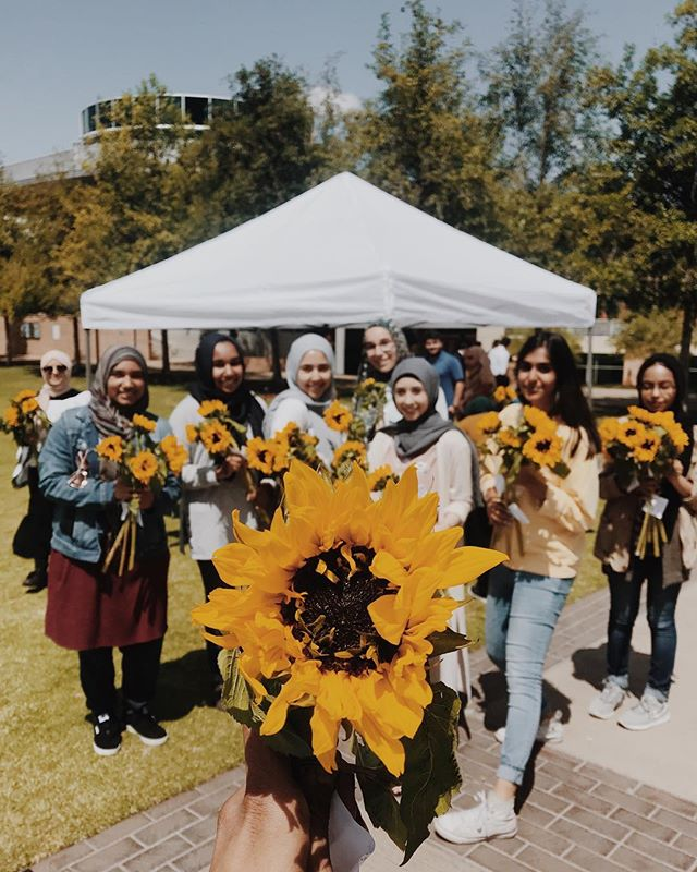 """Stop and smell the roses turned into, """"Be kind, for whenever kindness becomes a part of something it beautifies it."""" Thank you for the sunflower, the overwhelming joy, and all of your beautiful spirits. 🎶 Junge Junge - Catch 22  #california #socal #southerncalifornia #ucr #universityofcaliforniariverside #ucralumni #islam #islamawareness #msa #beauty #flowers #sunflower #summer #love #thelittlethings #blessed #women #worldchange #liveauthentic"""