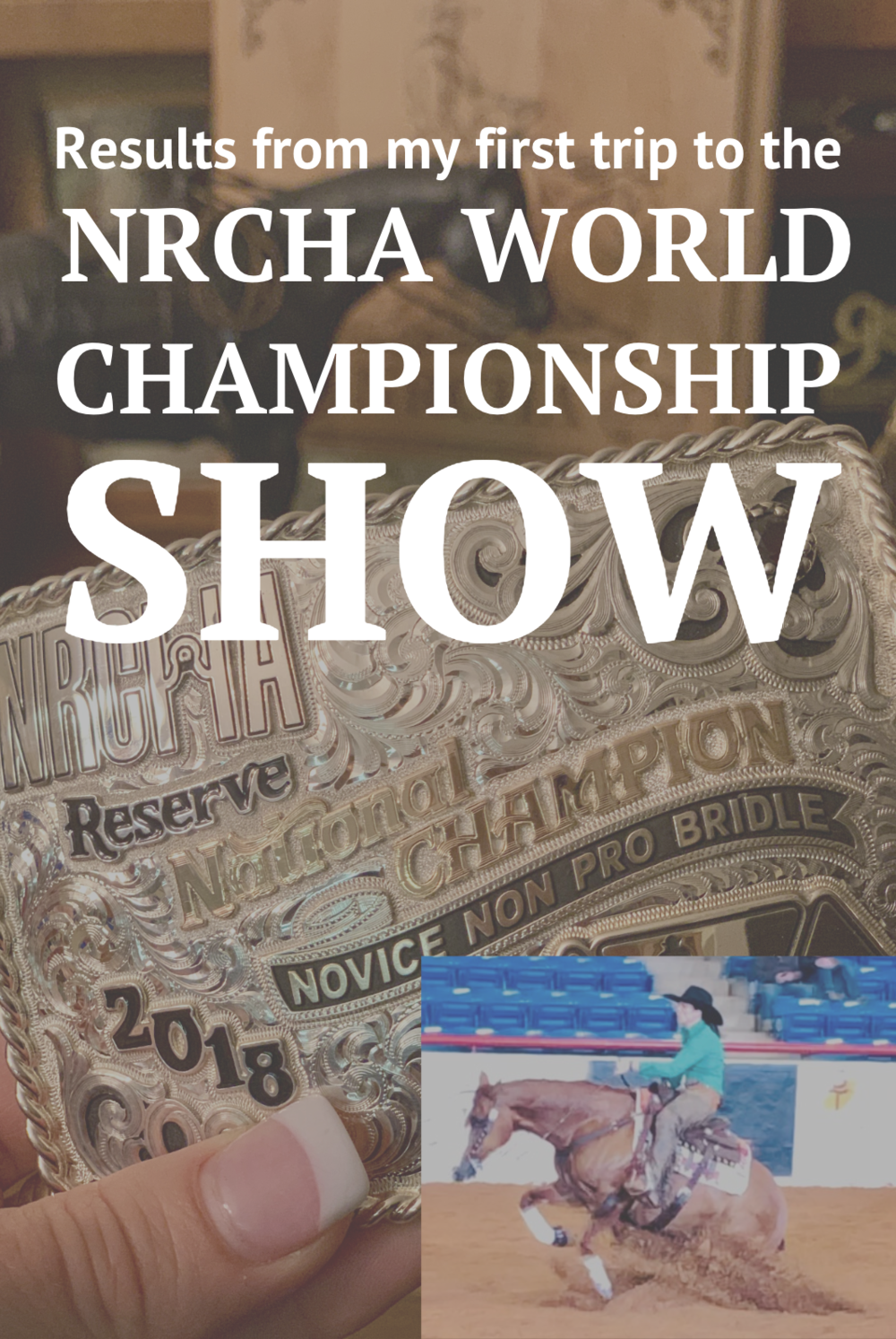 NRCHA_WORLD_SHOW_RESULTS_ANDREA_OTLEY.png
