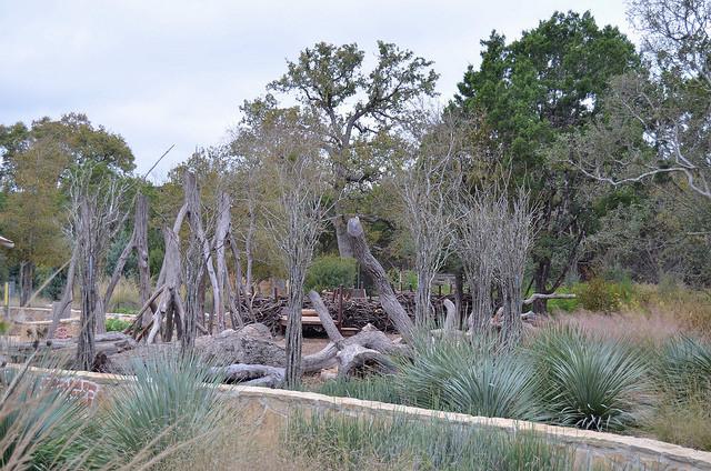 Play area at the Ladybird Johnson Wildflower Center. Austin, TX