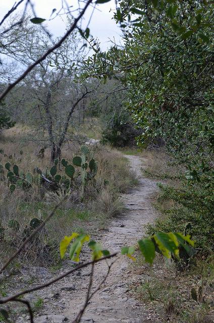 Path at McKinney Falls State Park, Austin, TX