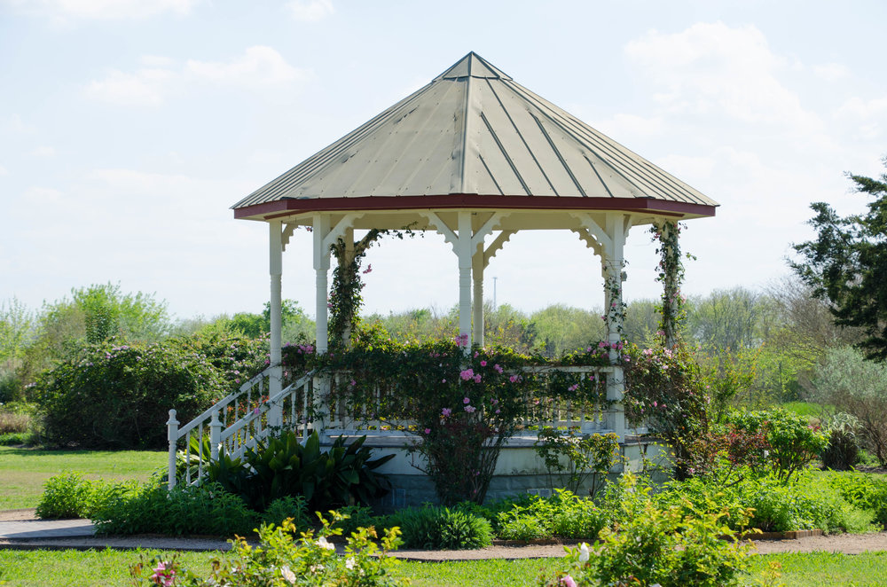 Gazebo at the Antique Rose Emporium