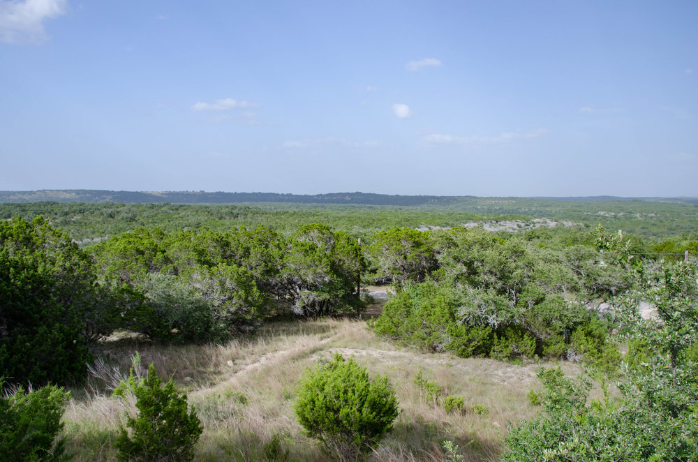 A view of the landscape as seen from park headquarters. Had this landscape still been in its pristine state, as it was prior to the arrival of settlers, you would have looked out over open grassland. The effect of human habitation was that the ecological balance was irrevocably altered, so that the area is now dominated by junipers.