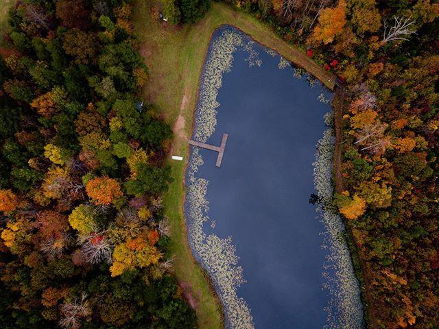 ⌘🍁 • #fall #nc #northcarolina #fromwhereidrone #dronestagram #mavicpro #wayup #arial #fallfoliage
