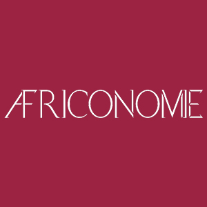 Africonomie_Alternative Insight_Premium.jpg