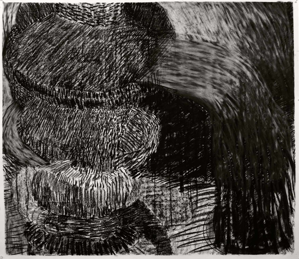 charcoal on paper, 41 x 48 2010