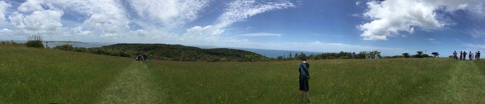Panoramic view from one of the grassy open areas on Tiritiri Matangi.