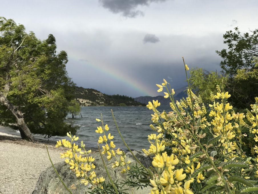 The rainbow over Wanaka.