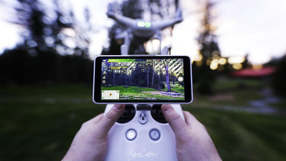 In Control (Phantom 4 Pro).jpg