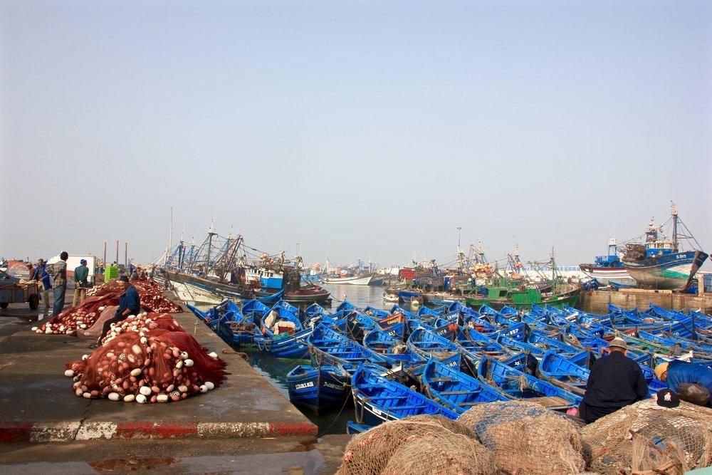 Essaouira Port with blue boats
