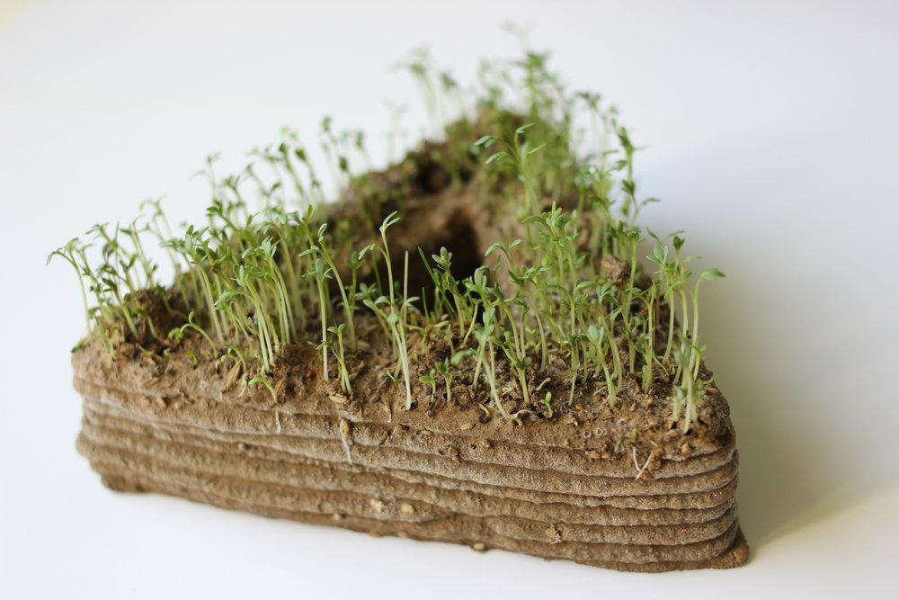 Collaboration with Maja Petek and PrintGreen   https://mapetie.com/   Soil 3D Print, Watercress, Clover  1-3-17