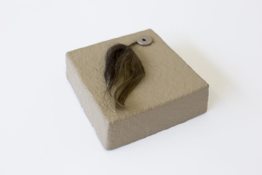 Mycelium, Metal, Hair