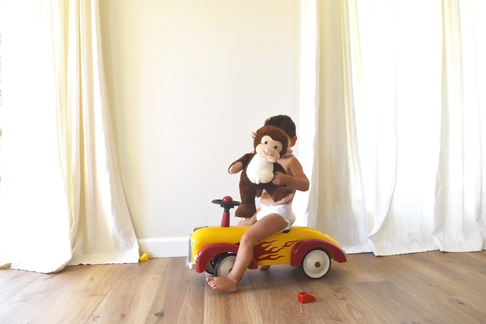 red car monkey