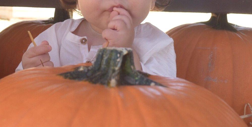 leo pumpkin.jpg