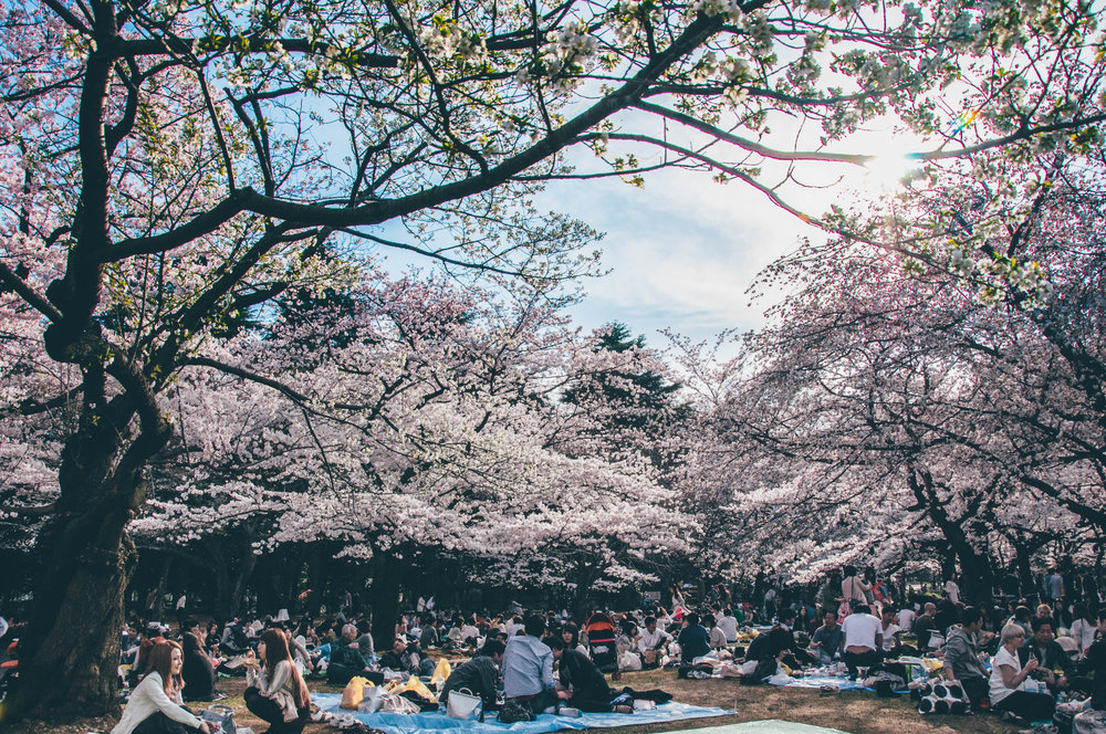 Tokyo.15.jpg