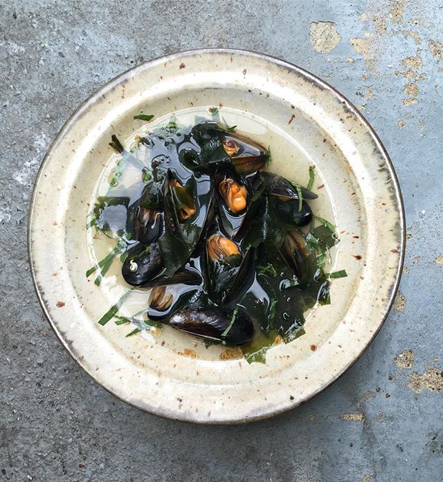 Thinking of cooking this warming light mussels and seaweed broth tomorrow as the weather has cooled. Detox vibes in a bowl 💥 either this or stir fried shaoxing mussels - can't decide!