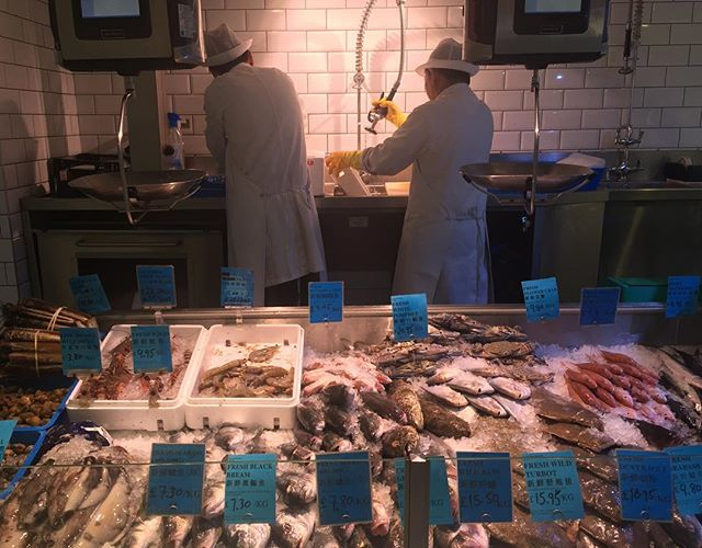 Seafood counter #seawoo - the razor clams were looking SO good 🎣🎣🎣