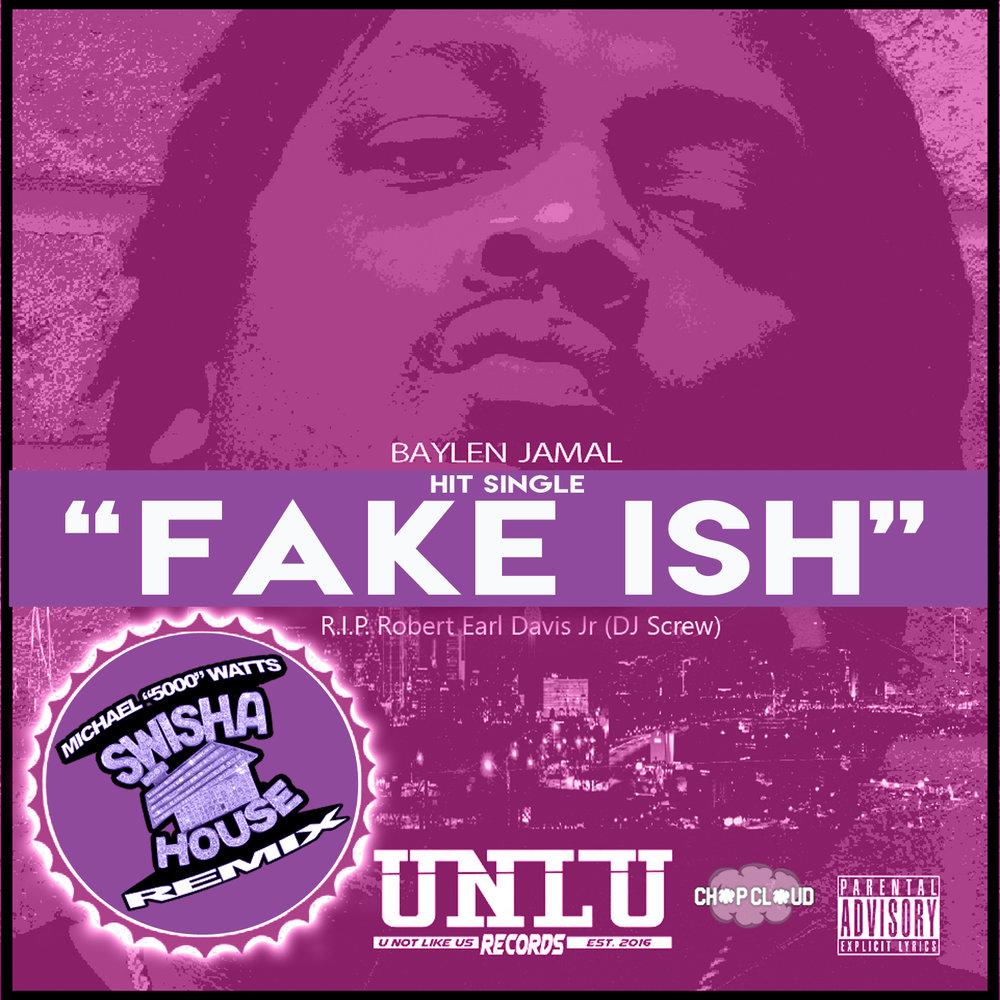 Baylen Jamal - Fake ish Cover Purple copy.jpg