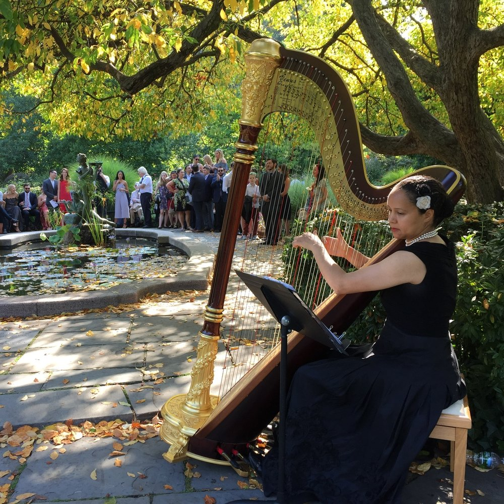 central park south garden harpist.JPG