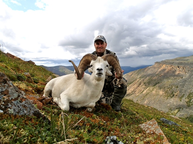 I wanted to share a photo of my 11 1/2 year old warrior NWT ram. Absolutely fantastic hunt in beautiful country. I used my Kestrel Ti knife to cape for a life sized mount. Your knife stayed sharp and is a joy to carry, perfect for sheep hunting. Thanks! Tom Oregon