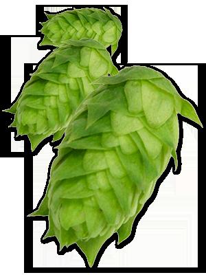 hop-cluster.png
